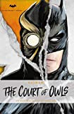 img - for DC Comics novels - Batman: The Court of Owls: An Original Prose Novel by Greg Cox book / textbook / text book