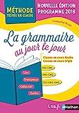 La grammaire au jour le jour : CE2 - CM1 / CM1 - CM2 / (French Edition)