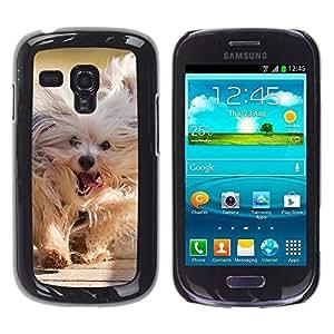 Be Good Phone Accessory // Dura Cáscara cubierta Protectora Caso Carcasa Funda de Protección para Samsung Galaxy S3 MINI NOT REGULAR! I8190 I8190N // Husky Siberian Dog Sledge Polar