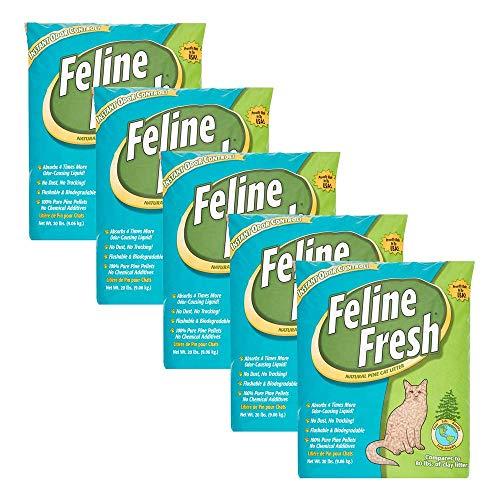 Feline Fresh Natural Pine Cat Litter, 20 Lbs - 5 Pack