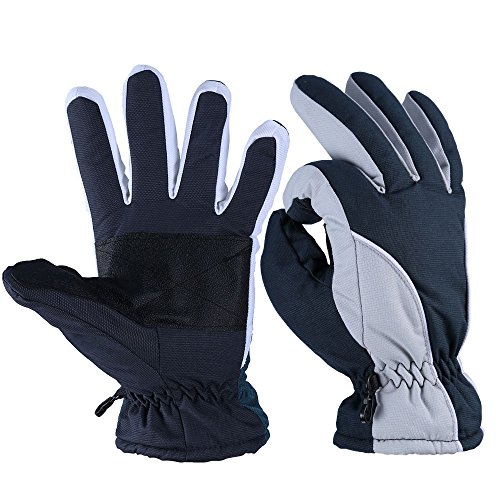Winter Gloves, OZERO -20ºF Cold Proof Thermal Skiing Glove for Men & Women - Reinforced PU Palm and TR Cotton Insert - Water Resistant & Windproof - Denim-Frost