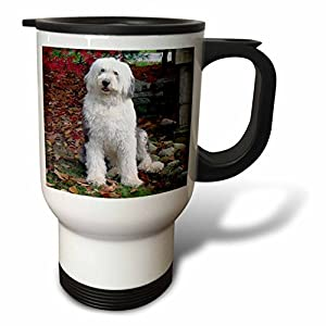 3dRose Old English Sheepdog Travel Mug, 14-Ounce 33