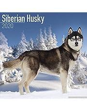 Siberian Husky Calendar 2020