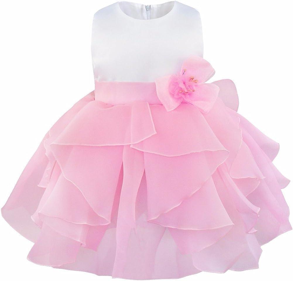 IEFIEL Vestido de Bautizo Princesa para Bebé Niña Recién Nacido (3 Meses-3 Años) Vestido de Fiesta Boda Vestido de Flores Infantil Falda Organza