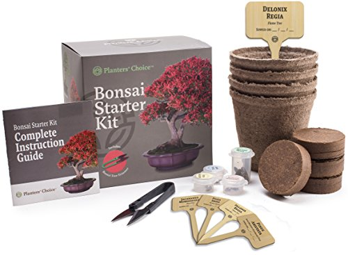 Planters' Choice Bonsai Starter Kit - the Complete Kit to Easily Grow 4 Bonsai Trees from Seed with Comprehensive Guide & Bamboo Plant Markers