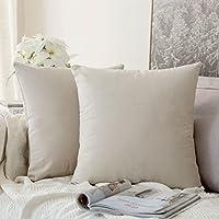 MIULEE Confezione da 2 Federe in Velluto Copricuscini Decorativi Fodere Quadrate per Cuscino per Divano Camera da Letto…