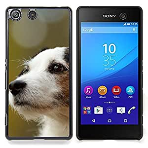 Ihec Tech Jack Russell Terrier perro canina / Funda Case back Cover guard / for Sony Xperia M5