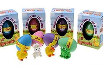 Amazon lil sprouts hatching easter eggs 4 pack watch lil sprouts hatching easter eggs 4 pack watch them grow overnight negle Image collections