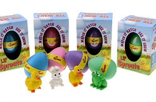 Lil' Sprouts Hatching Easter Eggs - (4 Pack) ~ Watch Them Grow Overnight (Chicken Egg Bag)