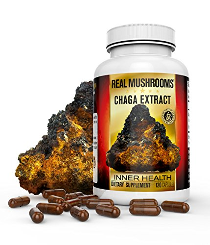 Organic Chaga Mushroom Capsules by Real Mushrooms – 120 Capsules – Wild Harvested Extract Powder