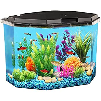Aquaview 6 5 gallon fish tank with power for Amazon fish tank filter
