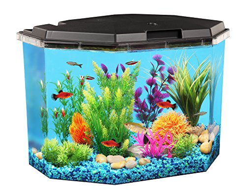 Goldfish Aquarium Filters (AquaView 6.5-Gallon Fish Tank with Power Filter and LED Lighting)