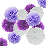 "Tissue Paper Pom Poms Decorations Flower Ball - 24 Pcs 8"" 10"" 12 Inch Variety Perfect Decor for Baby Showers Graduations Birthdays Baptisms Weddings Sweet Sixteen Bridal Bachelorette  (Purple White)"