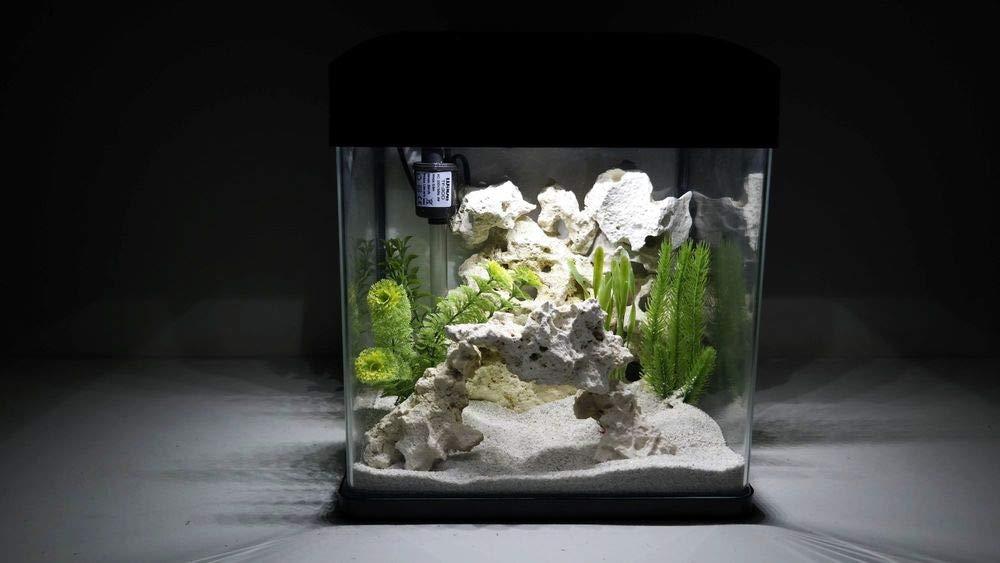 Nano Acuario Laguna en negro completo Acuario + LED Iluminación + Filtro equipo: Amazon.es: Productos para mascotas