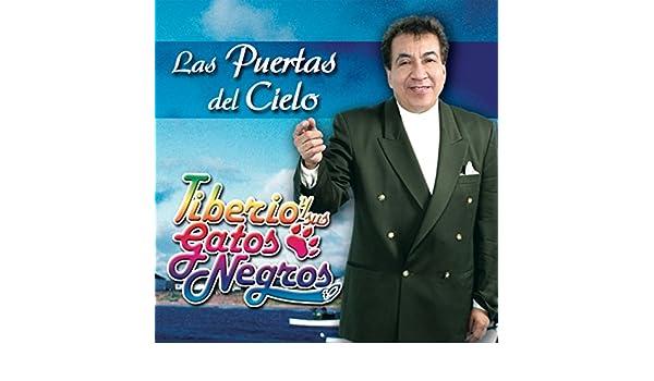 Oye Traicionera by Tiberio Y Sus Gatos Negros on Amazon Music - Amazon.com