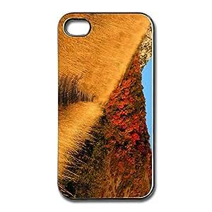 Art Belkin Mountain Trail Iphone 4 Skin