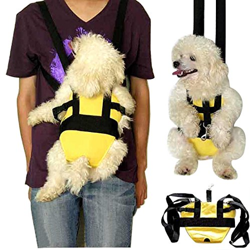 Portable Breathable Nylon fabric Legs Out Pet Front Travel Carrier Backpack