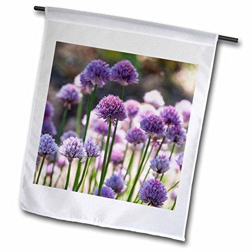 3dRose Uta Naumann Photography Flowers - Pink Leek Flowers in Spring - 12 x 18 inch Garden Flag (fl_253420_1)