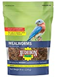 Global Harvest Foods 12816 Food Bird Mealworm, 8 oz