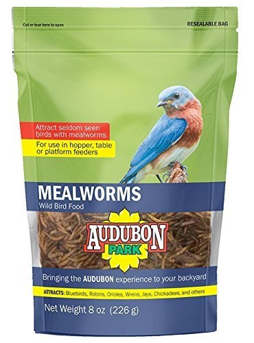 Global Harvest Foods 12816 Food Bird Mealworm, 8 oz
