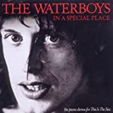 In A Special Place by The Waterboys (May 17, 2011)
