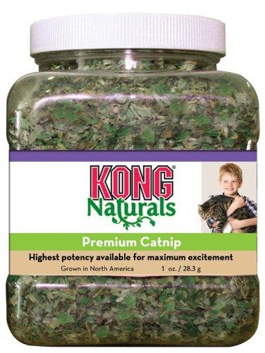 51ZtbxDdiAL - KONG Natural Catnip