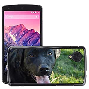Hot Style Cell Phone PC Hard Case Cover // M00114288 Labrador Dog Loyalty Love Black // LG Nexus 5