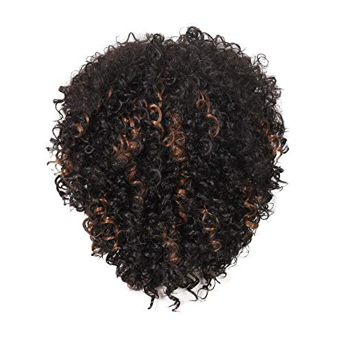 US shipment Clearance Natural Hairline Women Sprial Curls Kinky Curly Synthetic Rose Hair Net Wig by USLovee3000