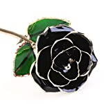 OULII-Blooming-Lacquered-24K-Gold-Roses-Plated-Real-Rose-Birthday-Valentines-Day-Anniversary-Gift-with-Souvenir-Bag-Black