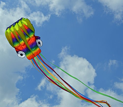 Frameless Parafoil Large Rainbow Octopus with String and Handle, Beautiful Colors in The Sky