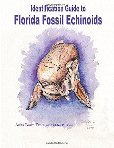 identification-guide-to-florida-fossil-echinoids
