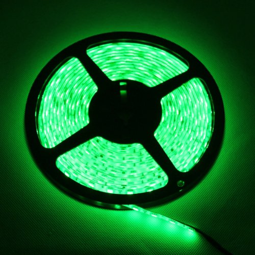 TKOOFN 16.4ft 5M Waterproof Rope Lights 300 LED 3528 SMD Flexible LED Strip Light + 12V 6A Power Supply, Green - (Us Halloween Celebration)