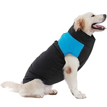 Treat Me Moderno Abrigo Chaqueta para Perros Mediano Grande Ropa para Perros Mediano de Invierno Chuabasquero para Perros Grande Azul M: Amazon.es: Deportes ...