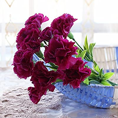 Uno de la falsa Simulación Flores Ramos de flores pequeñas de ...