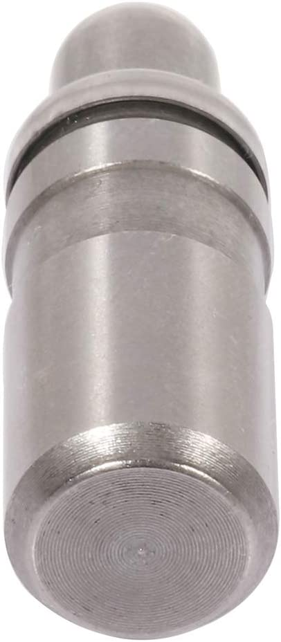 SCITOO Hydraulic Roller Lifter Fit For 2007-2009 GMC Acadia//2002-2009 GMC Envoy//2003-2008 Isuzu Ascender//2001-2002 Oldsmobile Aurora//2002-2004 Oldsmobile Bravada//1999-2002 Oldsmobile Intrigue