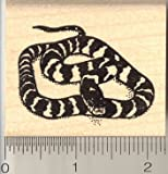 California King Snake Rubber Stamp