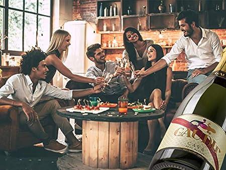 GAUDIr Cava Brut Nature - Estuche de cava para regalar - Pack de cava - Edición Limitada - Homenaje Modernista ciudad de Barcelona siglo XIX - Producto Gourmet - Vegano - 2 botellas x 750 ml.
