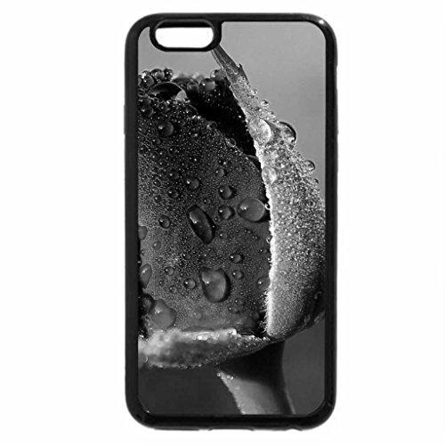iPhone 6S Plus Case, iPhone 6 Plus Case (Black & White) - Red Rose