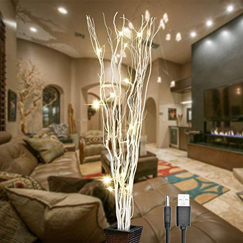 - Lightshare 36Inch 16LED Natural Willow Twig Lighted Branch for Home Decoration, USB Plug-in and Battery Powered