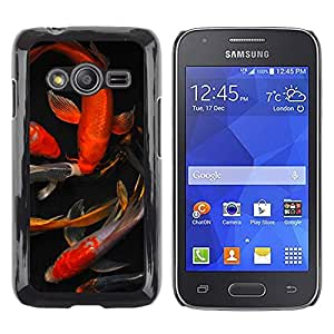 TopCaseStore / la caja del caucho duro de la cubierta de protección de la piel - Koi Goldfish Pond Golden Red Black - Samsung Galaxy Ace 4 G313 SM-G313F