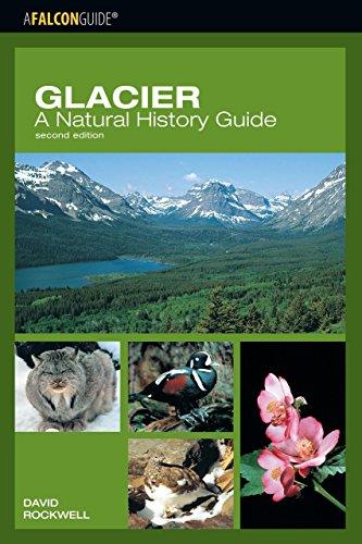 Glacier: A Natural History Guide (Falcon Guide)