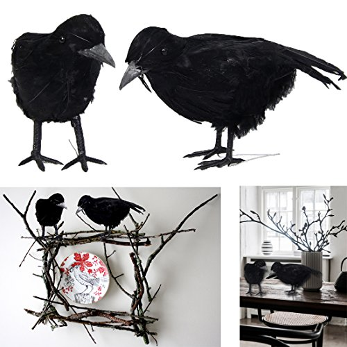 (Dazzling Toys Black Feathered Birds Prop Party Decoration 2 Pack)