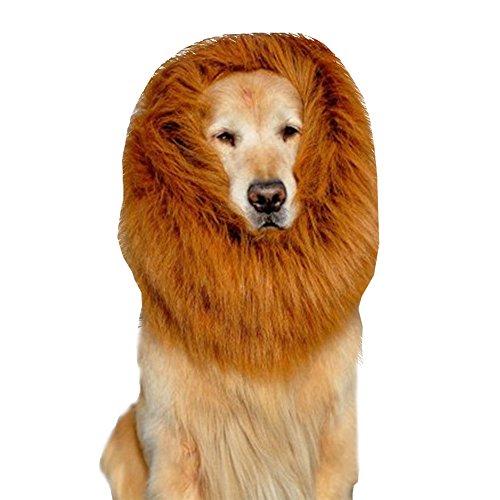 Ridgeback Lion Costume (Dog hats - Dog Lion Mane - Interesting Lion Mane for Dog Costumes Gift [Lion Tail] - Lion Wig Suitable for Medium to Large Sized Dogs (Large, Brown))