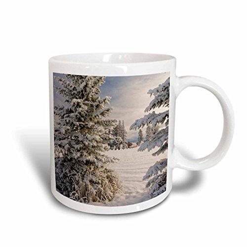 (3dRose Danita Delimont - Winter - Classic red barn and snow scene, Kalispell, Montana - 15oz Mug)