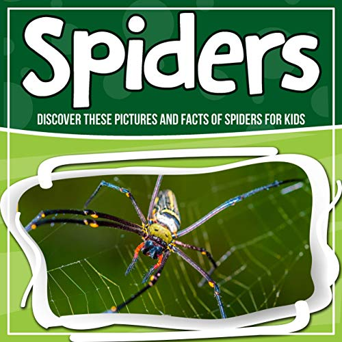 Spiders: Discover These Pictures And Facts Of Spiders For Kids]()