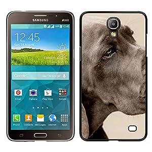 Caucho caso de Shell duro de la cubierta de accesorios de protección BY RAYDREAMMM - Samsung Galaxy Mega 2 - Gran danés Gran Grey Dog Pet