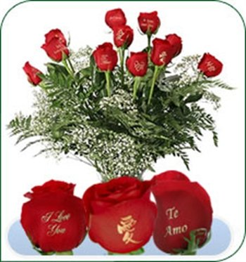 12 Red Roses   I Love You