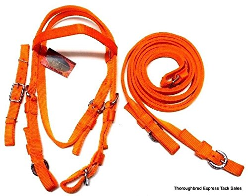 Orange Poly Nylon Extra Full Western Bridle w/ Center Buckle Reins Horse Tack