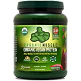 Organic Vegan Protein Powder - Great Tasting Chocolate Flavor W/24g of Protein -100% Organic Plant Based Protein Blend of Pea, Hemp, Rice Protein +Chia, Flax Seed, More -760g