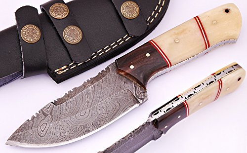 Knife Bone Black (SharpWorld Beautiful Damascus Knife Made Of Remarkable Damascus Steel and Exotic Handle -Best Hunting Knife With Sheath TJ102 (Camel Bone & Horn))